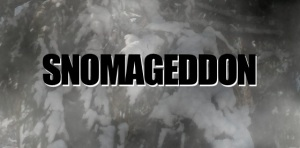 Snowmageddon image